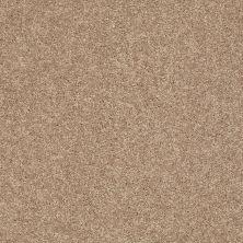 Shaw Floors Clearly Chic Bright Idea III Boardwalk 00702_E0506