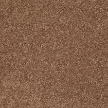 Shaw Floors Clearly Chic Bright Idea III Saddle Soap 00704_E0506