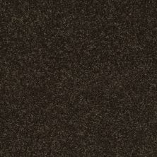 Shaw Floors Clearly Chic Bright Idea III Dark Chocolate 00706_E0506