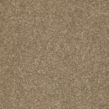 Shaw Floors Clearly Chic Bright Idea III Safari 00707_E0506