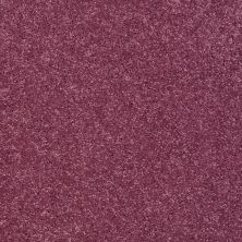 Shaw Floors Clearly Chic Bright Idea III Berry Kiss 00801_E0506