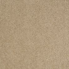 Shaw Floors Origins Field Stone 00105_E0523