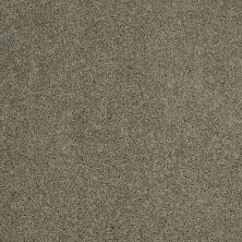 Shaw Floors Origins Silver Sage 00310_E0523