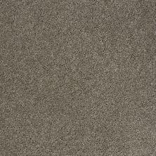 Shaw Floors Origins Pewter 00513_E0523