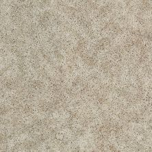 Shaw Floors Focus Noble Cream 00100_E0524