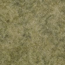 Shaw Floors Focus Sea Glass 00300_E0524