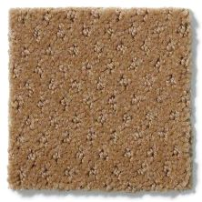 Shaw Floors Genesis Leather Bound 00702_E0525