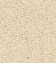 Shaw Floors Pace Setter Winter White 00100_E0527