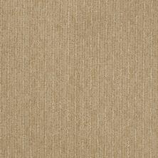 Shaw Floors Speed Of Light Field Stone 00105_E0528