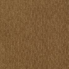 Shaw Floors Speed Of Light Leather Bound 00702_E0528