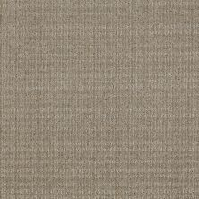 Shaw Floors Breakthrough Gray Flannel 00511_E0529