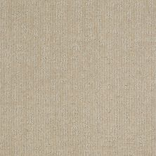 Shaw Floors Instant Impact Canvas 00103_E0530