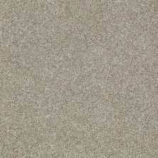 Shaw Floors Picturesque Gray Flannel 00511_E0539