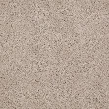 Shaw Floors Leading Legacy Soft Shell 00103_E0546
