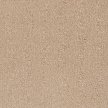 Shaw Floors Sandy Hollow Classic I 12′ Almond Flake 00200_E0548