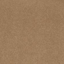 Shaw Floors Sandy Hollow Classic I 12′ Cornfield 00202_E0548