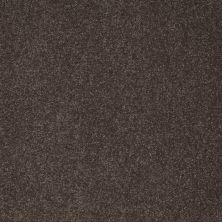 Shaw Floors Sandy Hollow Classic I 12′ Arrowhead 00522_E0548