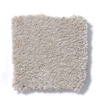 Shaw Floors Sandy Hollow Classic I 15 Oatmeal 00104_E0549