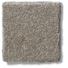 Shaw Floors Foundations Sandy Hollow Classic II 12 Wood Smoke 00520_E0550