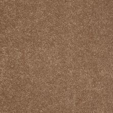 Shaw Floors Sandy Hollow Classic II 12 Windmill 00720_E0550