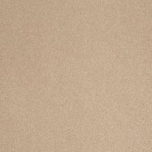 Shaw Floors Sandy Hollow Classic III 12′ Stucco 00110_E0552