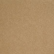 Shaw Floors Sandy Hollow Classic III 12′ Cork 00722_E0552