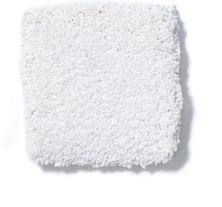 Shaw Floors Foundations Sandy Hollow Classic III 15′ Sweet Cream 00109_E0553