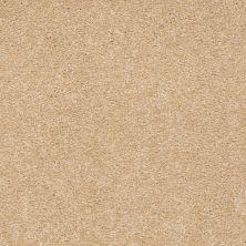 Shaw Floors Sandy Hollow Classic III 15′ Cornfield 00202_E0553