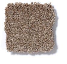 Shaw Floors Foundations Sandy Hollow Classic III 15′ Mojave 00301_E0553