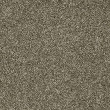 Shaw Floors Sandy Hollow Classic III 15′ Alpine Fern 00305_E0553