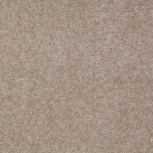 Shaw Floors Sandy Hollow Classic III 15′ Chinchilla 00306_E0553