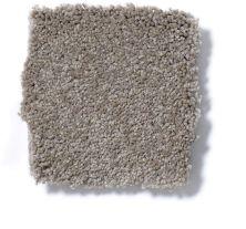 Shaw Floors Foundations Sandy Hollow Classic III 15′ Chinchilla 00306_E0553