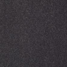 Shaw Floors Sandy Hollow Classic III 15′ Dutch Boy 00422_E0553