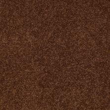 Shaw Floors Sandy Hollow Classic III 15′ Tortoise Shell 00707_E0553