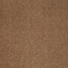 Shaw Floors Sandy Hollow Classic III 15′ Windmill 00720_E0553