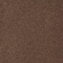 Shaw Floors Sandy Hollow Classic III 15′ Wooden Box 00721_E0553