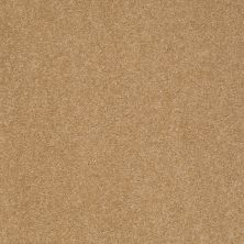 Shaw Floors Sandy Hollow Classic III 15′ Cork 00722_E0553