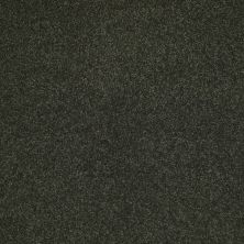 Shaw Floors Sandy Hollow Classic Iv 12′ Lilly Pad 00320_E0554
