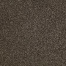 Shaw Floors Sandy Hollow Classic Iv 12′ Arrowhead 00522_E0554