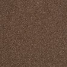 Shaw Floors Sandy Hollow Classic Iv 12′ Wooden Box 00721_E0554