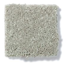 Shaw Floors Well Played I 12′ Wild Rice 00105_E0562