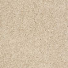 Shaw Floors Max Appeal Venetian Tile 00106_E0568