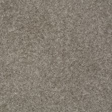Shaw Floors Max Appeal Pewter 00513_E0568