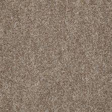 Shaw Floors Expect More (t) Pebble Path 00730_E0570