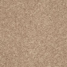 Shaw Floors Go Big Natural Flax 00105_E0571