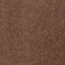 Shaw Floors Footwork Tudor Brown 00701_E0576