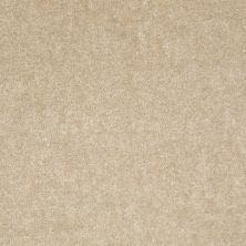 Shaw Floors Sprinter Practical Beige 00136_E0577