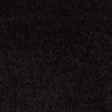 Shaw Floors Sprinter Black Beauty 00502_E0577