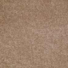 Shaw Floors Sprinter Willow 00700_E0577