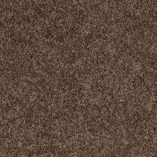 Shaw Floors Cabina Classic (s) Chocolate Chip 00714_E0587